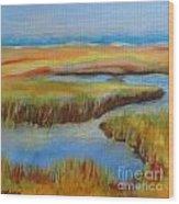 Cape Cod Colors Wood Print