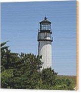 Cape Cod Light - Highland Light Wood Print
