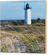 Cape Cod Lighthouse In Prowincetown  At  Summer Time Wood Print