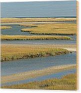 Cape Cod Wetlands Wood Print