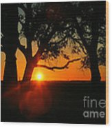 Cape Fear Sunset Wood Print