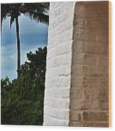 cape Florida light door Wood Print