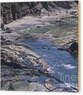 Cape Foulweather 1 Wood Print