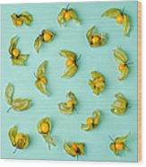 Cape Gooseberries Physalis, Winter Wood Print