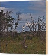 Cape Hatteras Lighthouse 1 8/20 Wood Print
