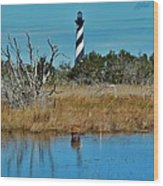 Cape Hatteras Lighthouse Deer In Pond 1 3/01 Wood Print