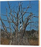 Cape Hatteras Lighthouse Through The Trees 3/01 Wood Print