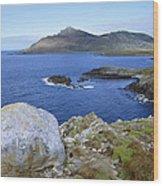 Cape Horn National Park Patagonia Wood Print