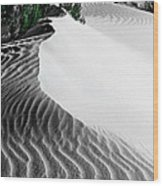 Cape Le Grande Sand Dune Wood Print