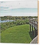 Cape May Hawk Watch Wood Print