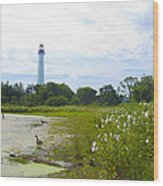 Cape May Lighthouse - New Jersey Wood Print