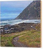 Cape Perpetua Path Wood Print