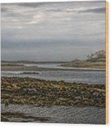 Cape Porpoise Maine - Fog On The Horizon Wood Print