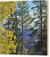 Cape Royal Grand Canyon Wood Print