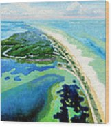 Cape San Blas Florida Wood Print