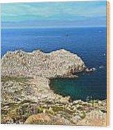 Cape Sandalo In Carloforte Wood Print