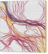 Capillaries Wood Print