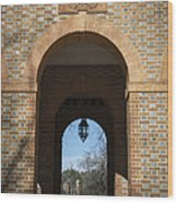 Capitol Arch Wood Print