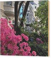 Capitol Hill Azaleas Wood Print