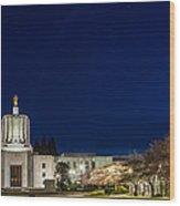 Capitol Twilight Wood Print