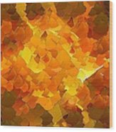 Capixart Abstract 101 Wood Print by Chris Axford