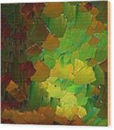 Capixart Abstract 80 Wood Print by Chris Axford
