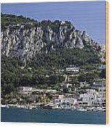 Capri Italy Wood Print