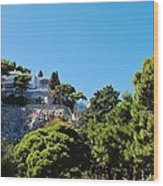 Capri's Gardens Wood Print