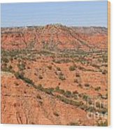 Caprock Canyon 1 Wood Print