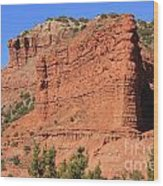 Caprock Canyon 2 Wood Print