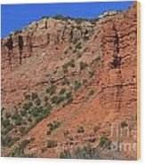 Caprock Canyon 3 Wood Print