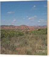 Caprock Canyon Of Texas Wood Print