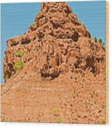 Caprock Canyon State Park Wood Print