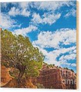 Caprock Canyon Tree Wood Print