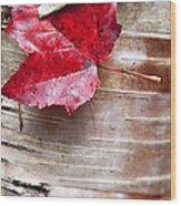 Captured Color Wood Print