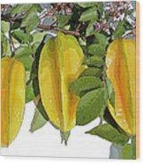 Carambolas Starfruit Three Up Wood Print
