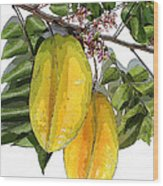 Carambolas Starfruit Two Up Wood Print