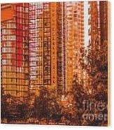 Cardero-71-jpg Wood Print