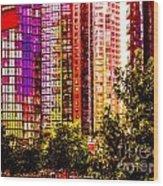 Cardero-72-jpg Wood Print