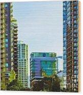 cardero-78-JPG Wood Print