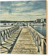 Cardiff Bay Wetlands 2 Wood Print