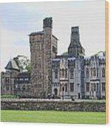 Cardiff Castle 8394 Wood Print