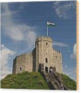 Cardiff Castle Keep Wood Print