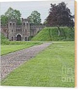 Cardiff Castle Wall 8383 Wood Print