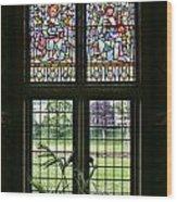 Cardiff Castle Window 8355 Wood Print