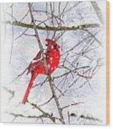 Cardinal Christmas-2014 Wood Print