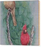 Cardinal Companions Wood Print