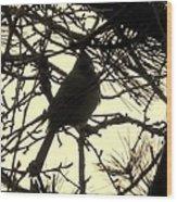 Cardinal Contour Wood Print
