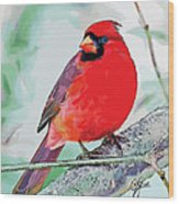 Cardinal In Ice Tree Wood Print