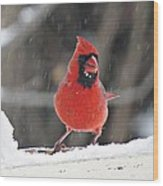 Cardinal In Snowstorm Wood Print
